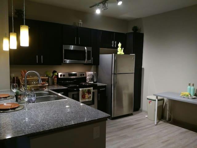 SUPERBOWL-Modern 1 bedroom APT - Houston - Lägenhet