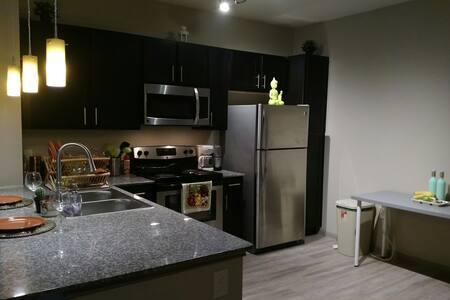 SUPERBOWL-Modern 1 bedroom APT - 休斯顿