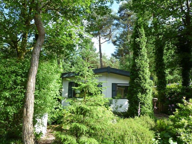 Heerlijk vakantiehuis Diever, aan de bosrand! - Diever