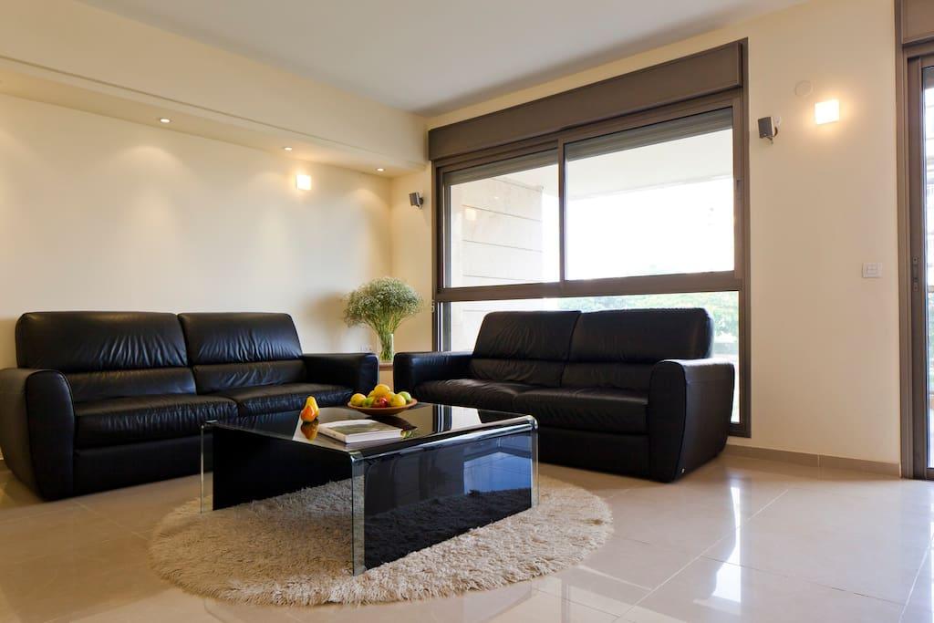 Spacious living room with big windows