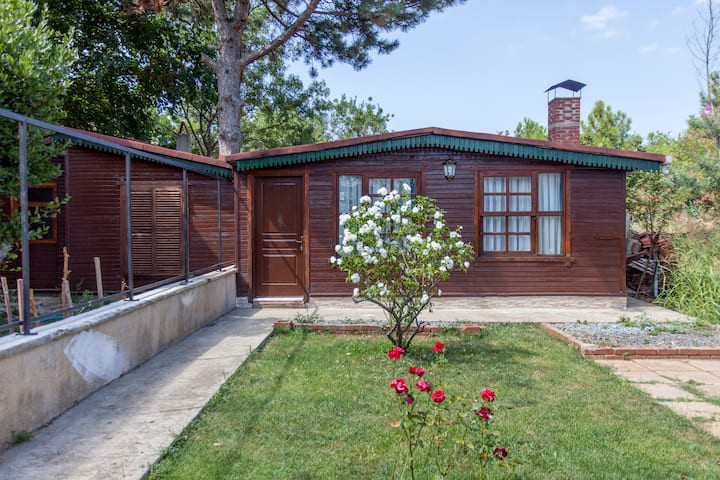 Detached Wooden House with garden
