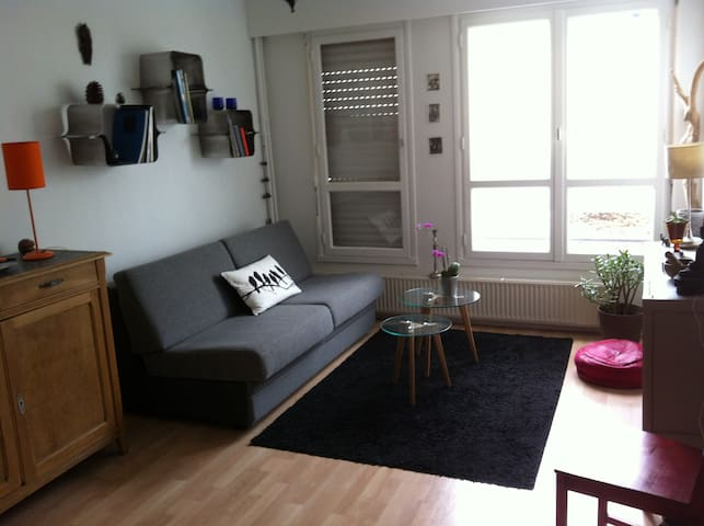 One bedroom flat in Republique area