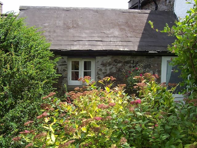 Dartmoor cottage - Tavistock - Huis