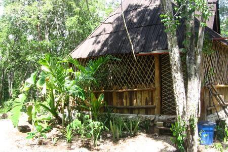 Mayan retreat in National Park - Bed & Breakfast