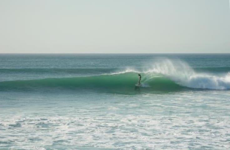 Las Olas 3br/2ba Beachfront Condo - Cabo San Lucas - Ortak mülk