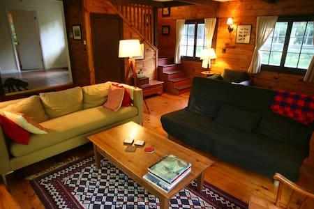 Lakeside Adirondack vacation house - Hadley - Kabin