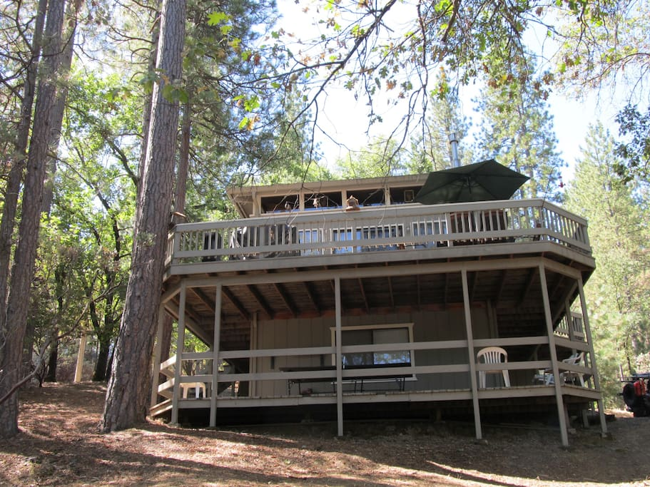 The cedar cabin at pine mt lake cabins for rent in for Groveland ca cabin rentals