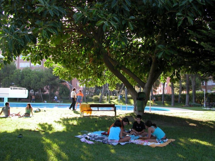 La zona de piscina con arboles y la tranquilidad