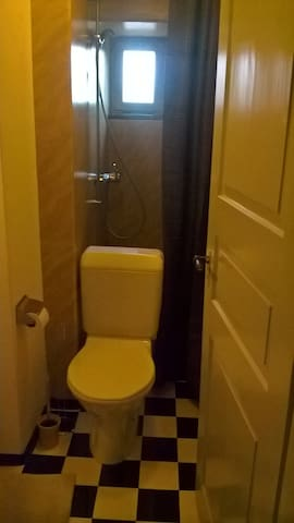 The bathroom is very small. The shower is behind the WC.