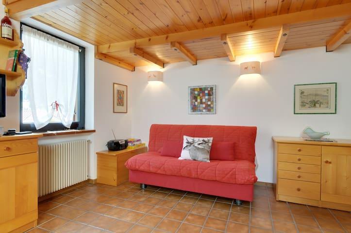 Moena Dolomiti Val di Fassa - Moena - Apartemen