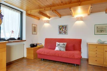 Moena Dolomiti Val di Fassa - Moena - 公寓
