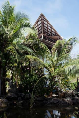 ALPAMAMA: Mar y Bosque Seco Humedo Tropical