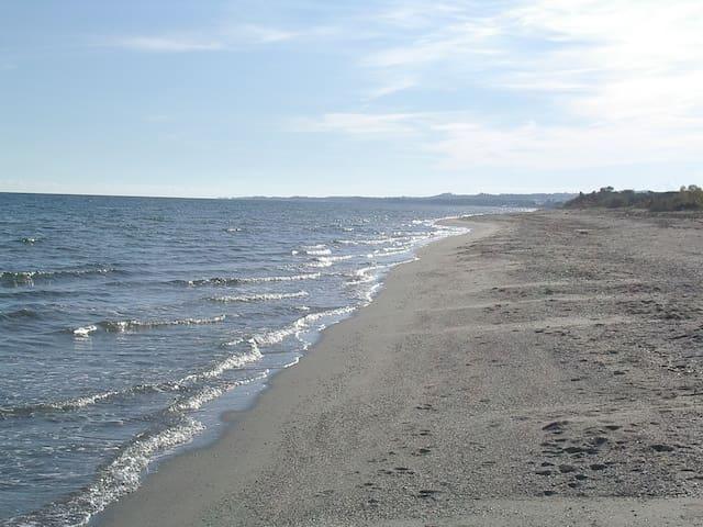 corse alba serena2 pied dans l'eau