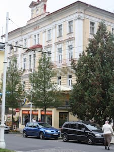 Two-bedroom apt.5 min from kolonada - Mariánské Lázně