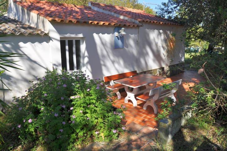 """Studio T0 auf der """"Quinta da Tosca"""""""
