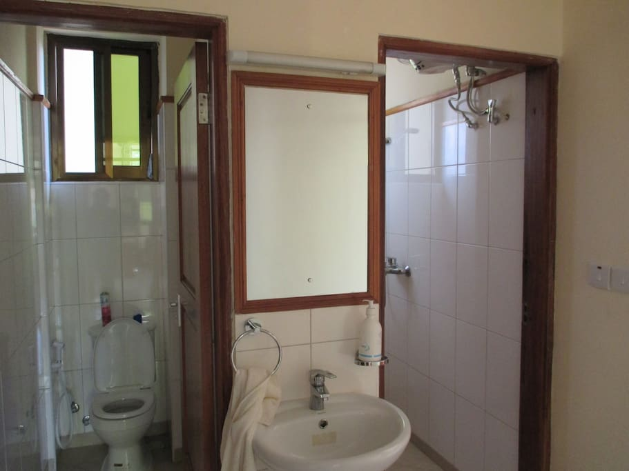 A shared toilet and bathroom and a shower