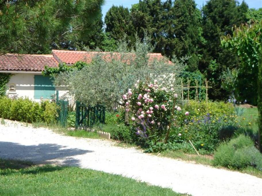 jardin et gîte