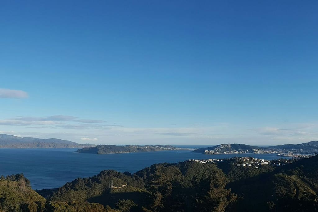 Beautiful walks around Wellington to gain some perspective :-)