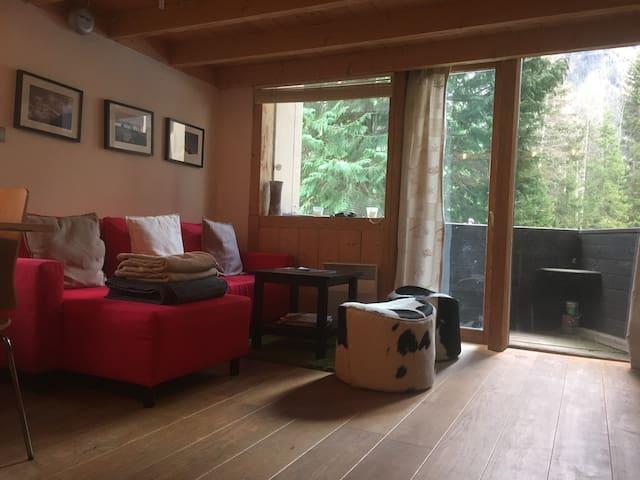 Argentiere - Ski Apartment - Chamonix - Pis