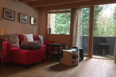 Argentiere - Ski Apartment - シャモニ
