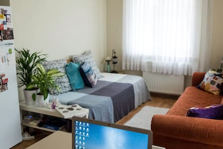 Cozy flat & private room on the Asian Side - Ataşehir - Flat