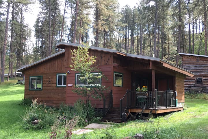 Peaceful Silver City cabin getaway