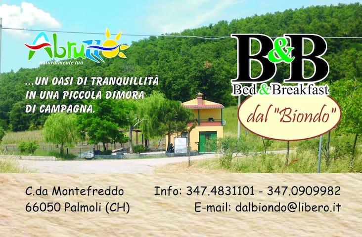 Vacanza e relax a Palmoli - Palmoli - ที่พักพร้อมอาหารเช้า