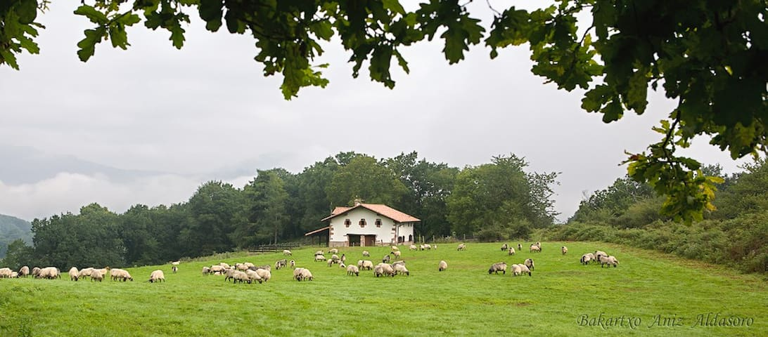 Country House in Baztan (Basque C.)