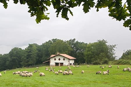 Country House in Baztan (Basque C.) - Baztan