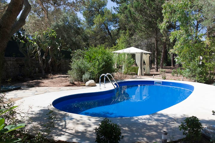 Villa CARDINALE in pine forest & pool on Salento