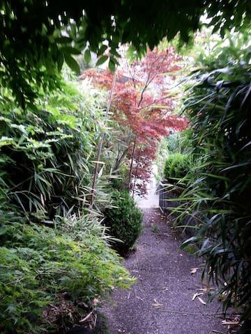 Entrance through the garden