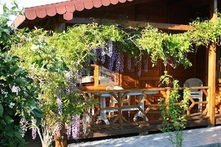 Prachtige vrijstaande Bungalow  - Cirali / Antalya  - Dom