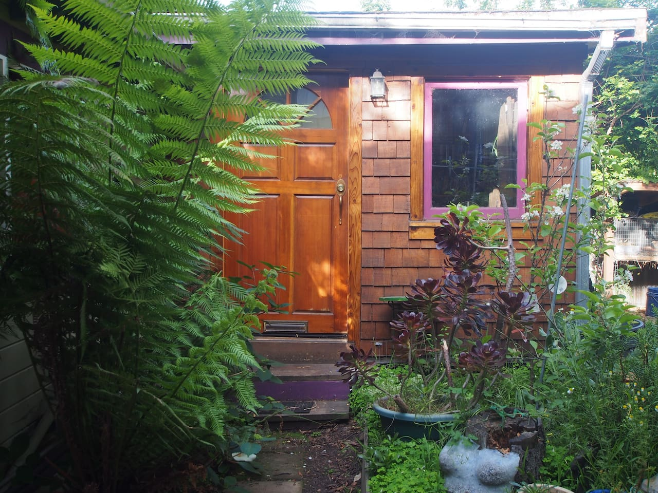 Hobbit house and fern