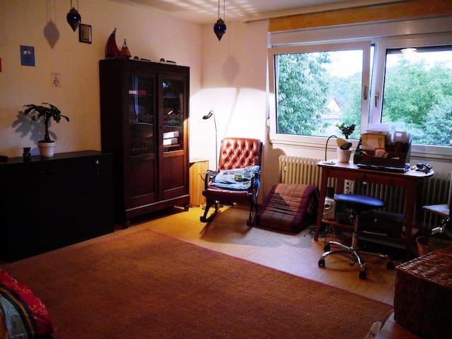 Schöne, helle und zentrale Wohnung - Mainz - Appartement