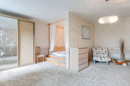 Просторная уютная квартира