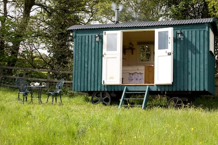 Hafod Las Shepherds Hut