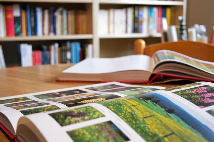 La libreria - The library