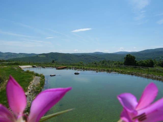 Green Loft, Montecastelli Pisano, Tuscany!!