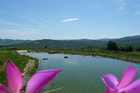 Green Loft, Montecastelli Pisano, Tuscany!! - Castelnuovo di Val di Cecina