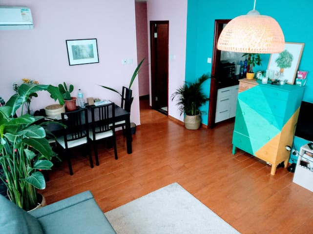 Spacious and colourful flat with private rooftop