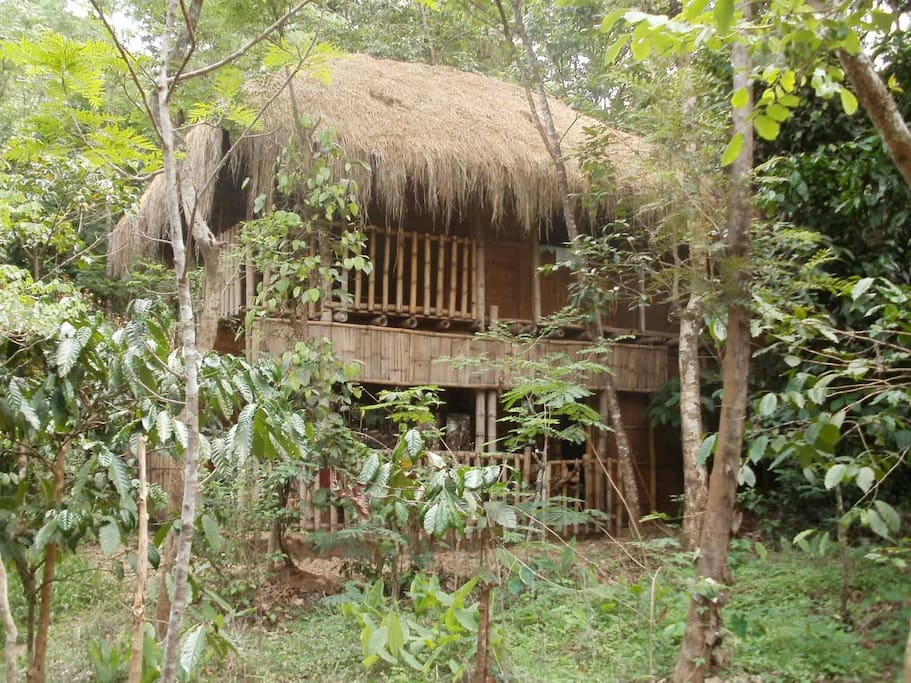 Wayand Accommodation Eco Stay