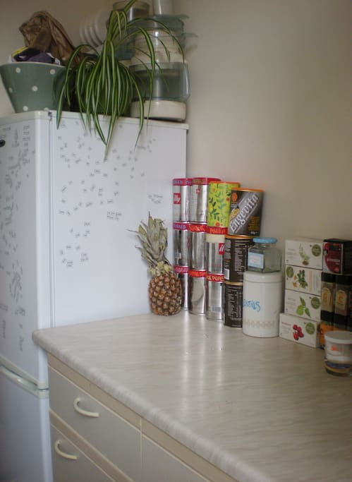 kitchen with fridge and cooking space