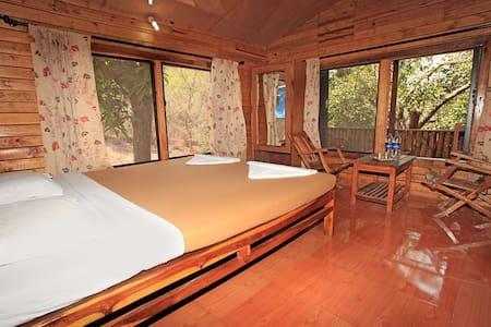 Luxury AC Log House at Dapoli - Dapoli - Chalet