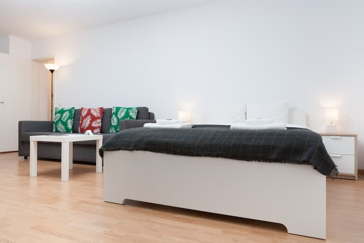 Delta 1 - Studio Apartment - Luzern city