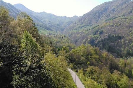 Delizia tra i monti - Cassina Valsassina - Wohnung