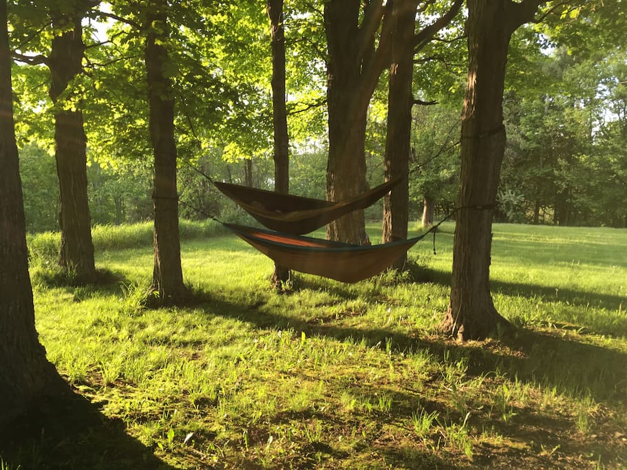 hang a hammock in our maple grove which overlooks Upper Herring Lake and usually has a nice breeze.