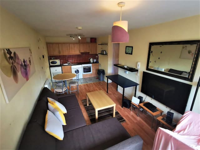 Cosy one bedroom apartment in the heart of Galway