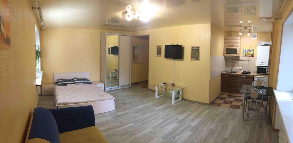 Квартира в центре ( гогля 101) стандарт
