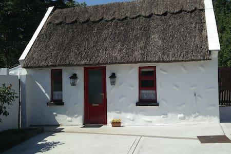 Wild West Thatched Cottage in Burren Lowlands