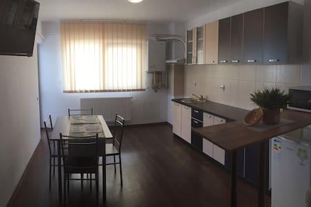 New and modern 1 bedroom apartment - Șelimbăr - Huoneisto